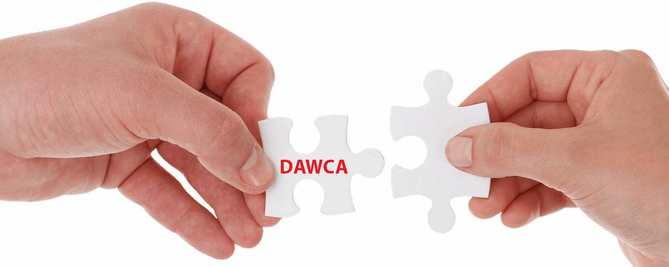 Ręce trzymające puzzle z napisem dawca - akcje DKMS
