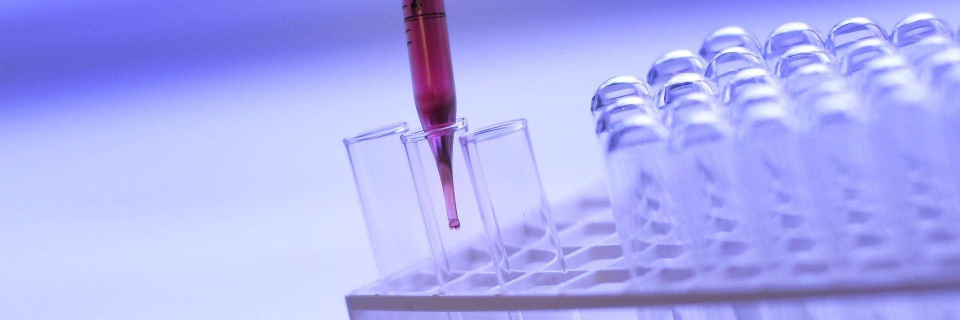 www_laboratorium